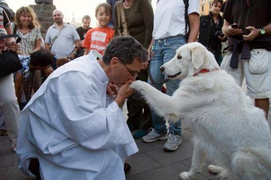 Itália, 4 de outubro de 2011, festa de São Francisco de Assis: sacerdote recebe a benção do cão.