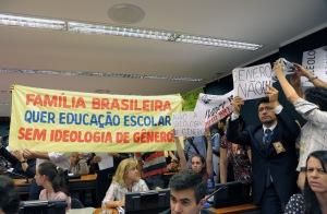 8 de abril de 2014: Providas defendem a Lei Natural na Câmara