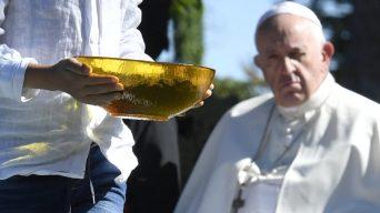 Papa sínodo 2